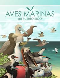 Aves marinas de Puerto Rico