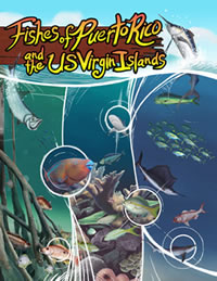 Peces de Puerto Rico y de las Islas Vírgenes EUA (quinta edición)
