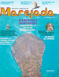Marejada Vol. 3 Num. 1