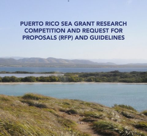 Puerto Rico Sea Grant Research Competition and Request for Proposals (RFP) and Guidelines