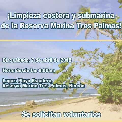 Limpieza de playa en la Reserva Marina Tres Palmas