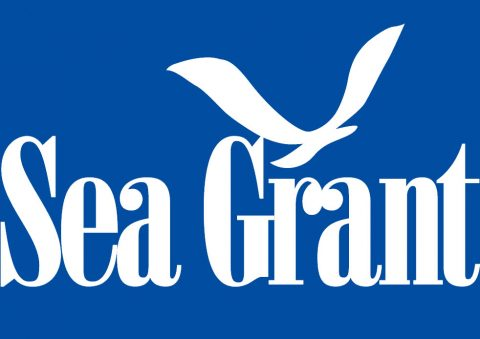 All Sea Grant Funding Opportunities