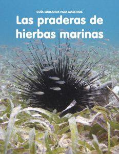 Las praderas de hierbas marinas: Guía para maestros