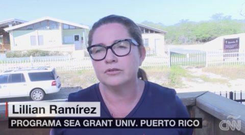 Cambio climático: en Puerto Rico preocupa las inundaciones en Salinas de Cabo Rojo