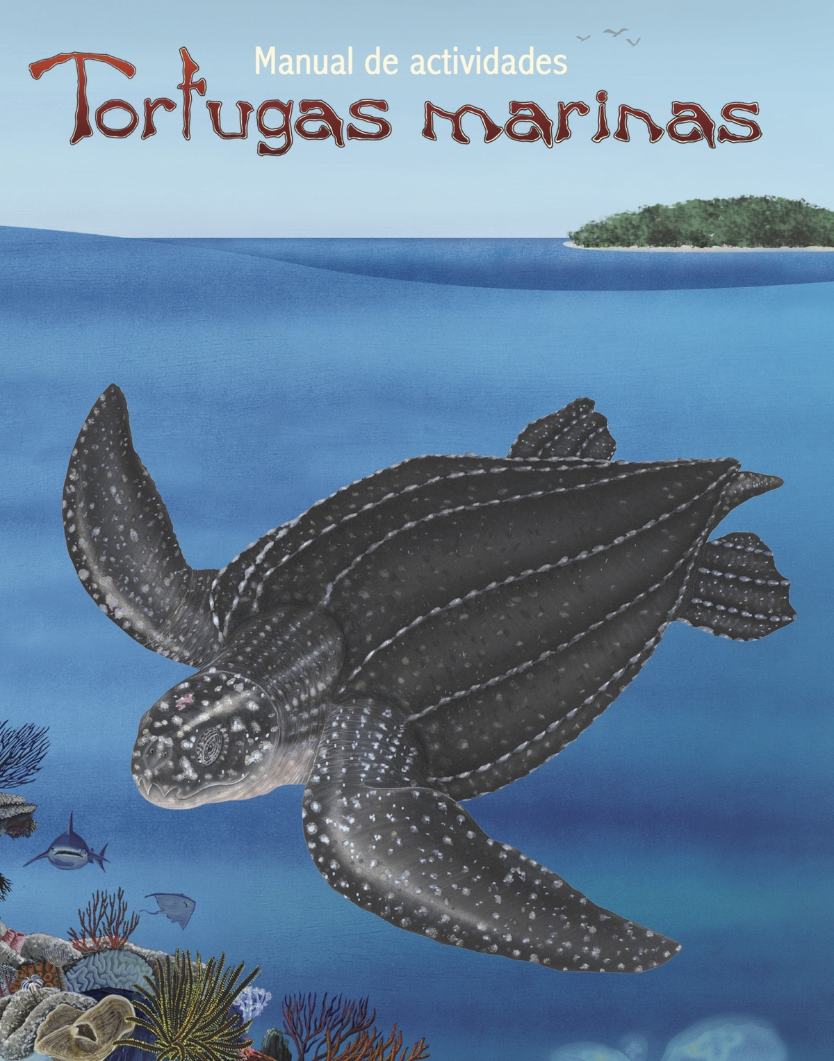 Tortugas marinas: Manual de actividades