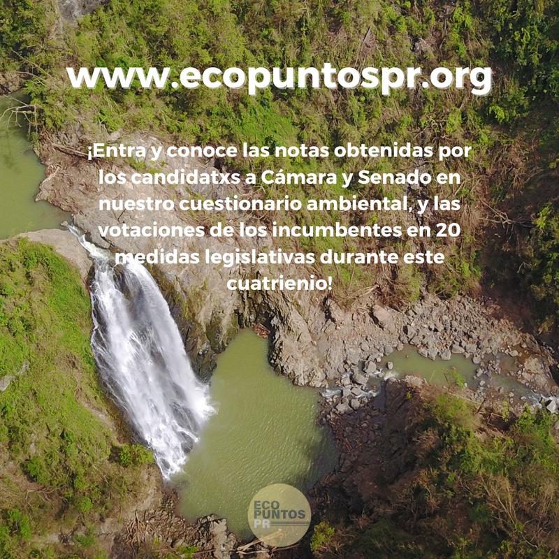 ECOPuntosPR Web