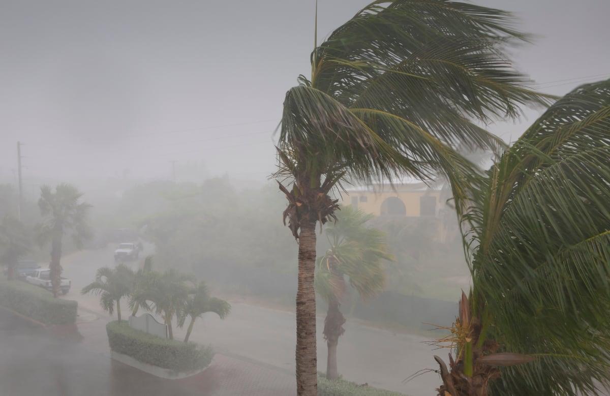 Conversatorio: Impacto de María en las costas de Puerto Rico